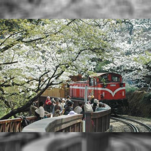 目指せ!台湾名所の世界遺産登録 日本人らが応援活動展開 | 観光 | 中央社フォーカス台湾