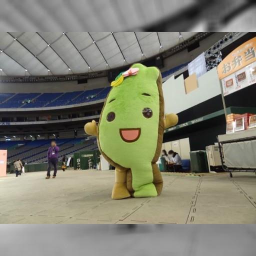 タイワンダー☆が東京ドームに立った!