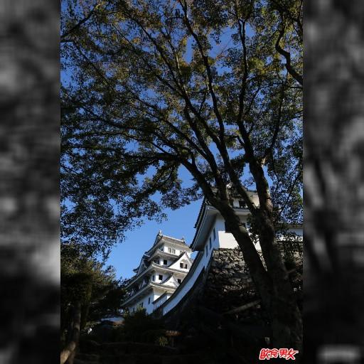 【旅途中】日本 楓染郡上八幡古城 郡上八幡城位於日本中部的岐阜縣,是建於1559年的古城池,現在的八幡城是於1933年重建的,但也算是日本全國木造的重建城中最古老的城堡。
