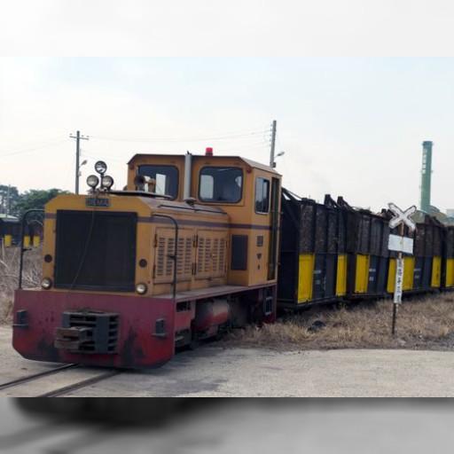 サトウキビの収穫シーズン到来 糖業鉄道の運行も始まる/台湾 | 経済 | 中央社フォーカス台湾