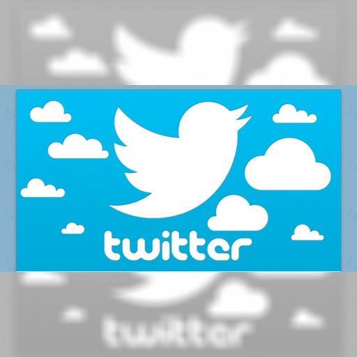 Twitterにおける日本人ユーザーの利用程度に関する研究