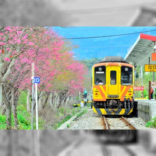 岐阜)長良川鉄道、台湾線と姉妹協定へ 集客に期待:朝日新聞デジタル