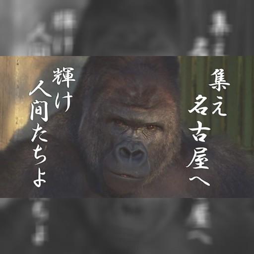 名古屋召募公僕 最帥名「猩」代言 | 奇聞不要看 | 全球 | 聯合新聞網