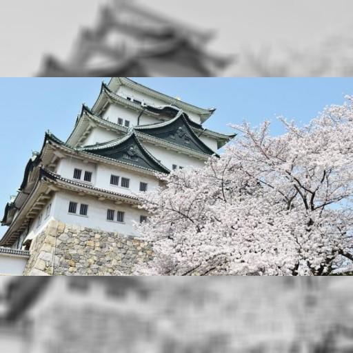 【美麗佳人】去膩東京.大阪?來一趟日本中部城市 6大特色超吸引人