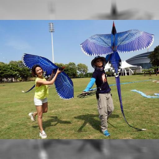 北海岸たこ揚げフェス、今年の目玉は110羽つながった台湾の「青い鳥」 | 観光 | 中央社フォーカス台湾