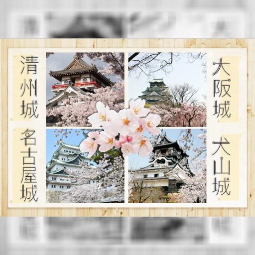 名古屋附近的櫻花和城堡很好看呢