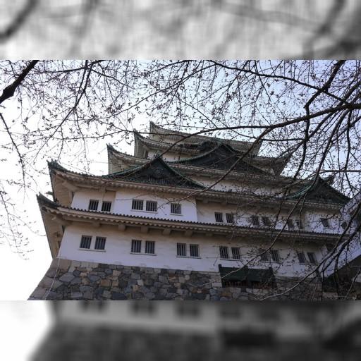 名古屋城的小幸運 – taiwanmickey's blog – udn部落格